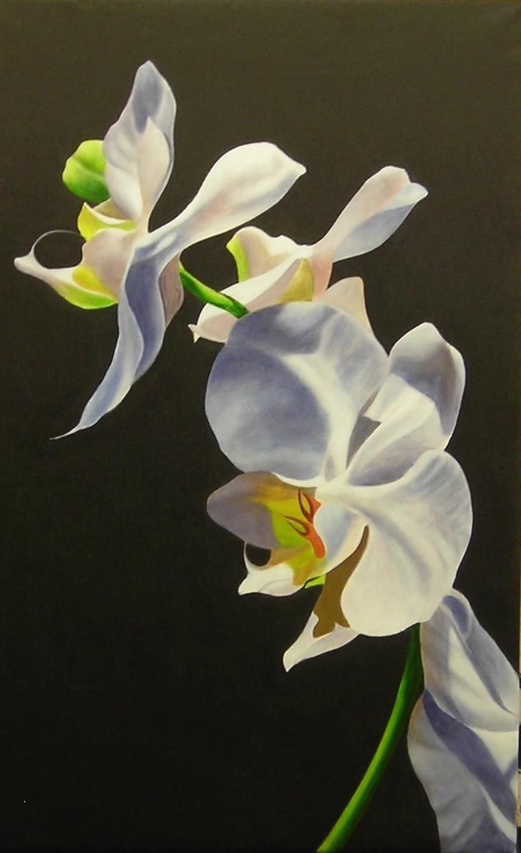 Doug Sweet Carol Robinson Gallery