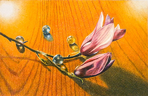 Magnolia and Glass Beads